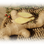 Benefits of Ginger and Ginger Ale